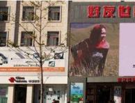 著名画家曾迎春登陆北京王府井巨屏展风采(组图)