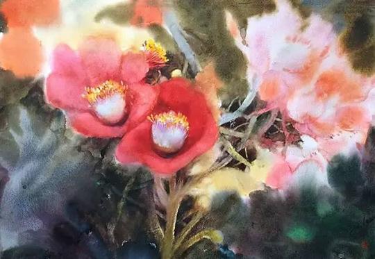 张小纲组图水彩作品欣赏(花卉)视频发饰图片