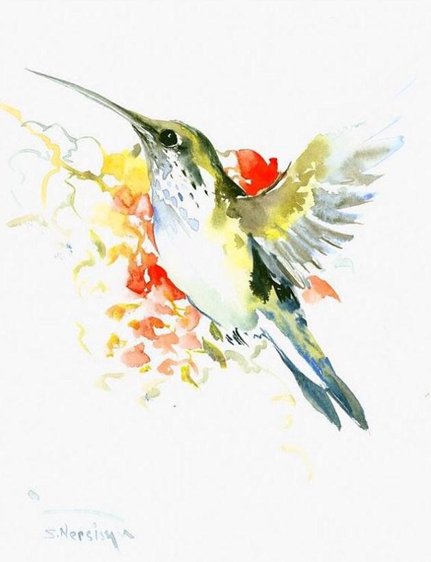 画师于飞的唯美蜂鸟水彩画作品