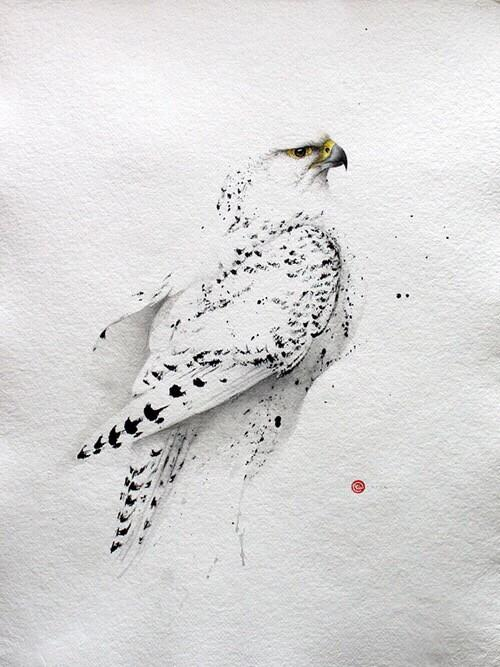 唯美鸟儿水彩画绘画作品