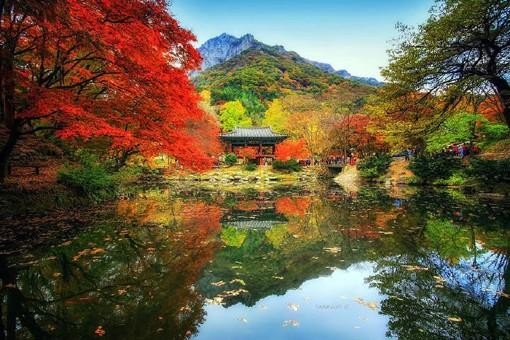 摄影师Jaewoon U的倒影对称风格的自然风光摄影