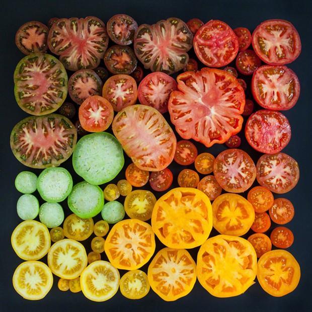 蔬菜与鸡蛋的渐变色创意摄影图片