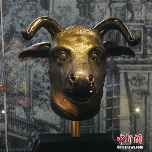 圆明园十二生肖兽首铜像中的牛首、虎首、猴首、猪首一起现身湖北宜昌。(中新社记者 王康明 摄)